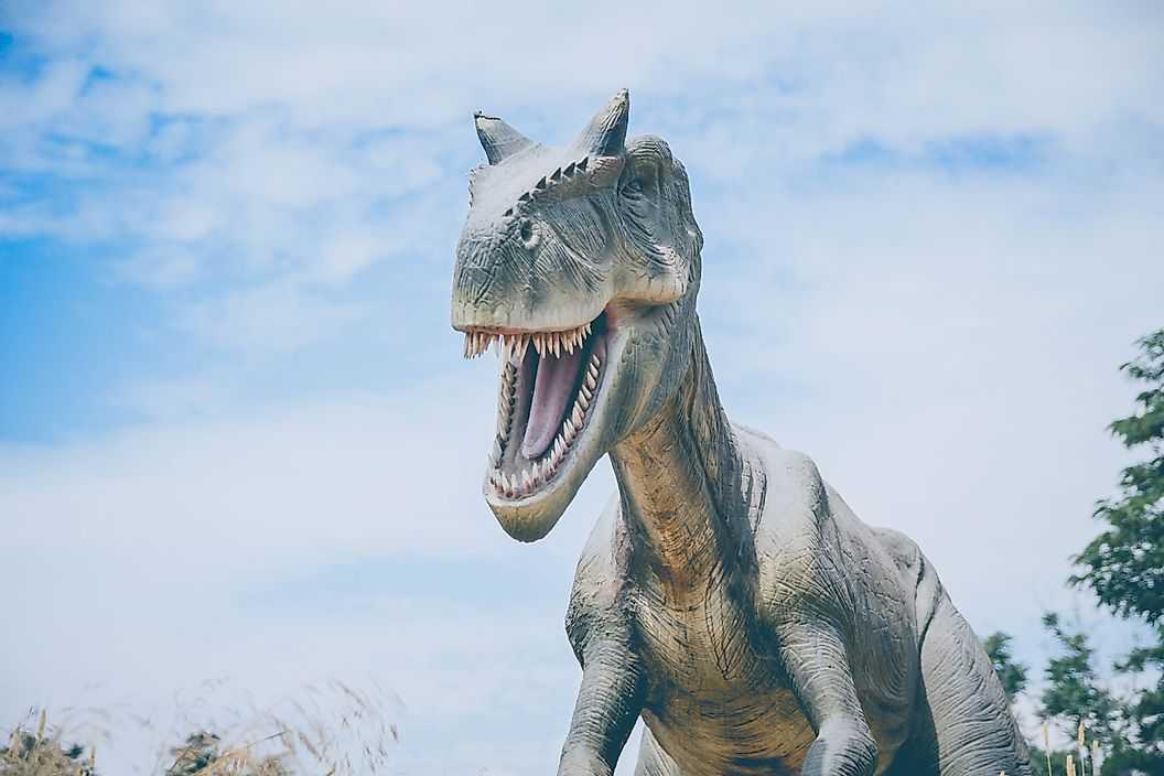 7. У динозавров характерные особенности