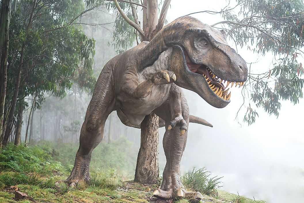 Динозавры существовали долгое время