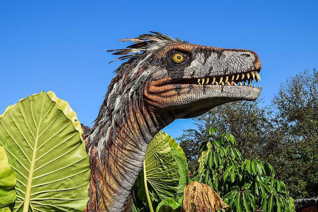 10 причин, по которым динозавры продолжают волновать нас