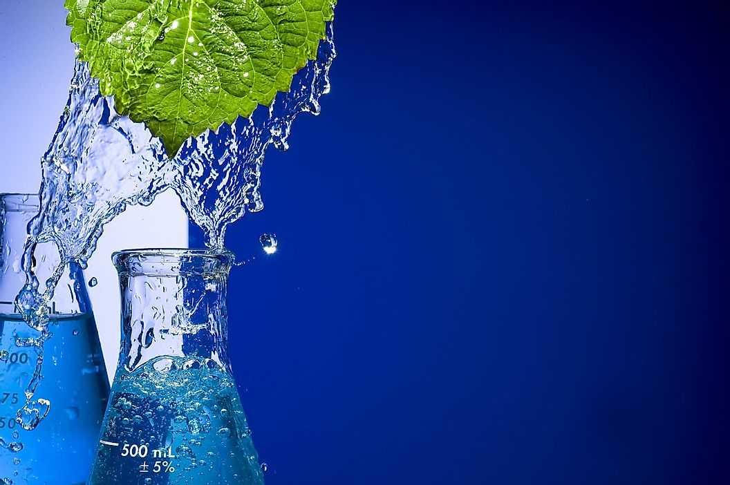 5 основных областей науки об окружающей среде