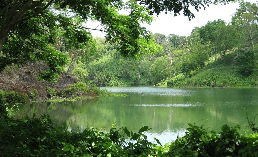 Природа страны Бангладеш
