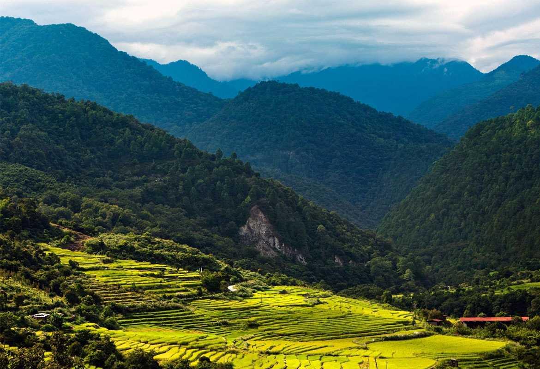 Природа Бутана