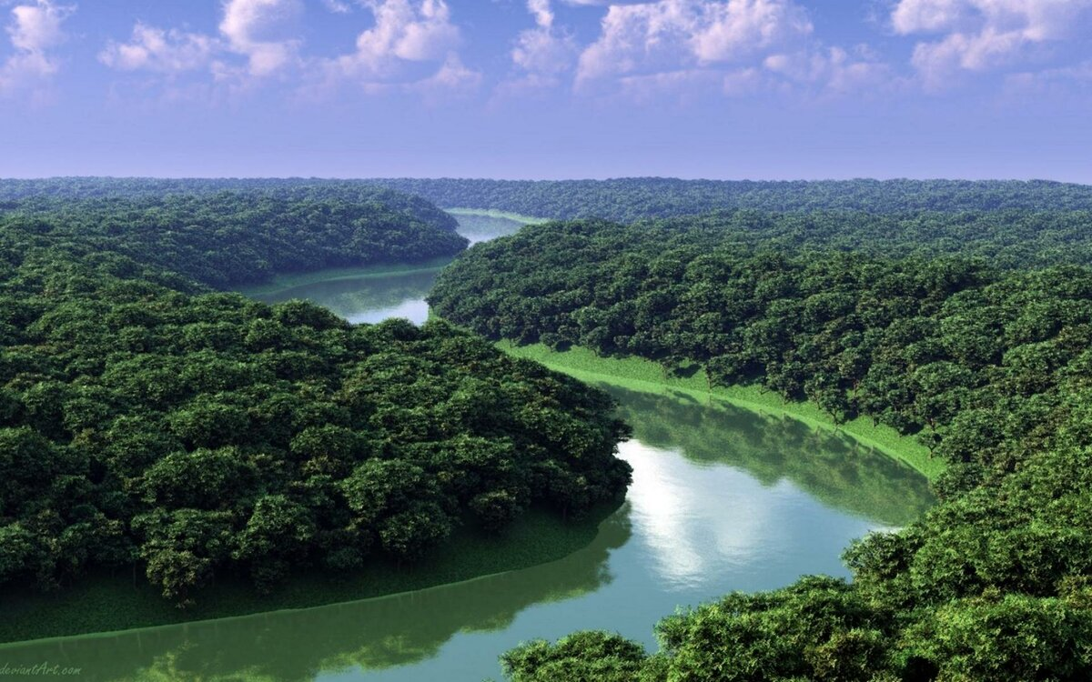 Природа Бразилии