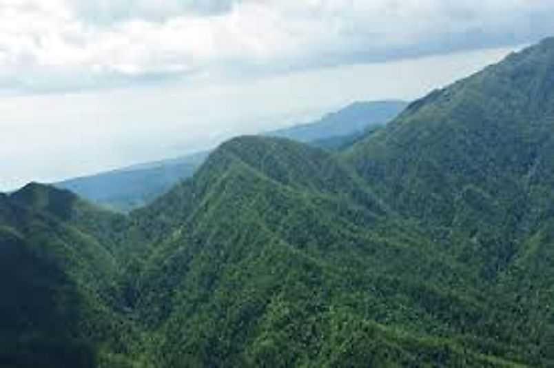 Горы Блю и Джон Кроу