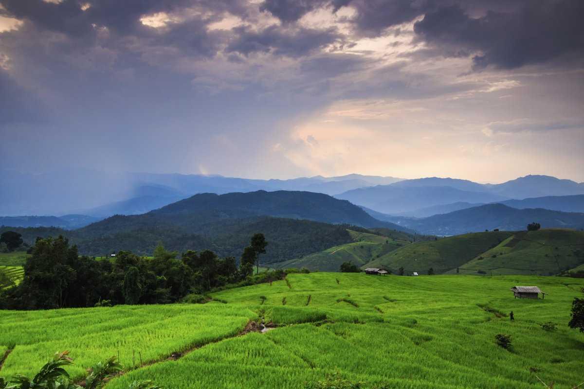 Природа Камбоджи