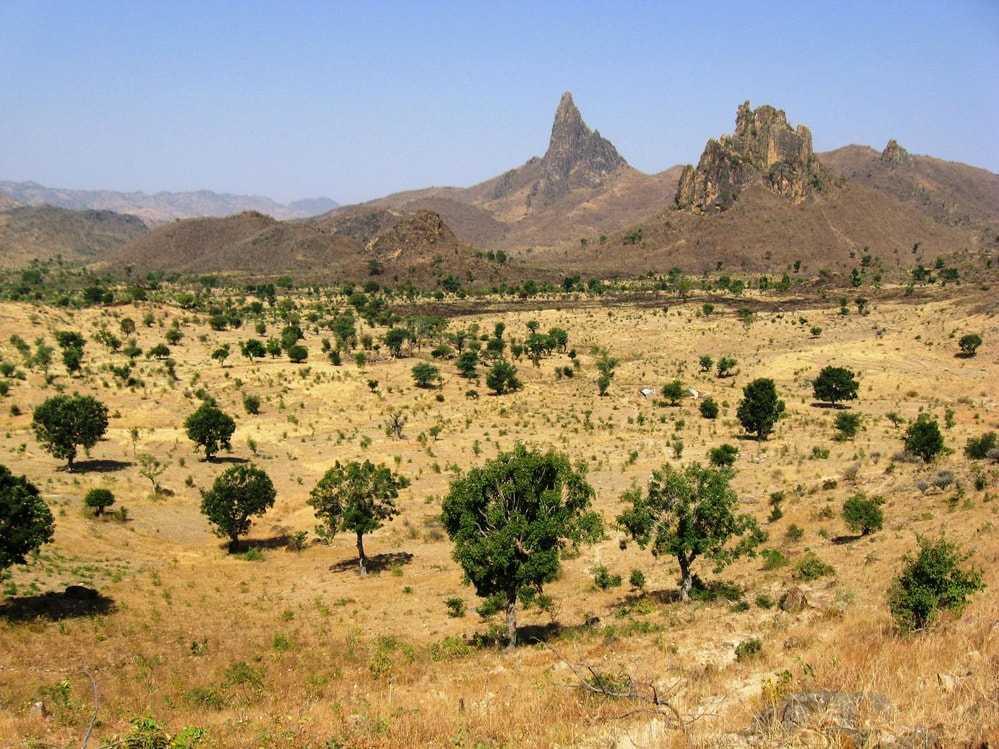 Природа Камеруна