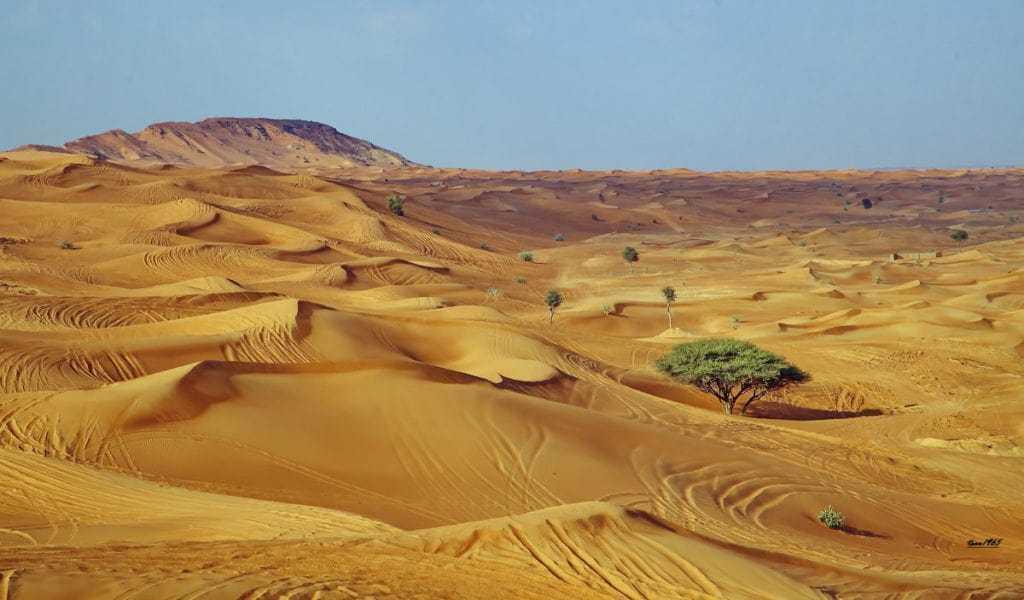 Кувейт природа