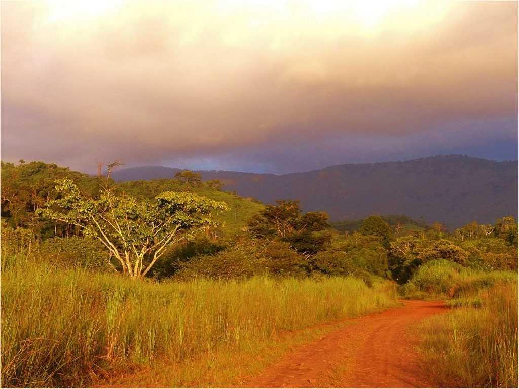Либерия природа