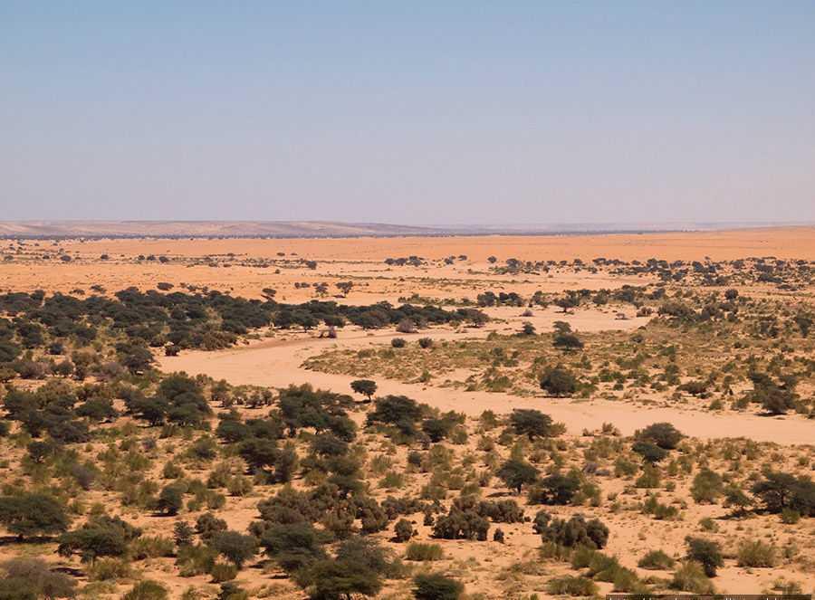Мавритания природа