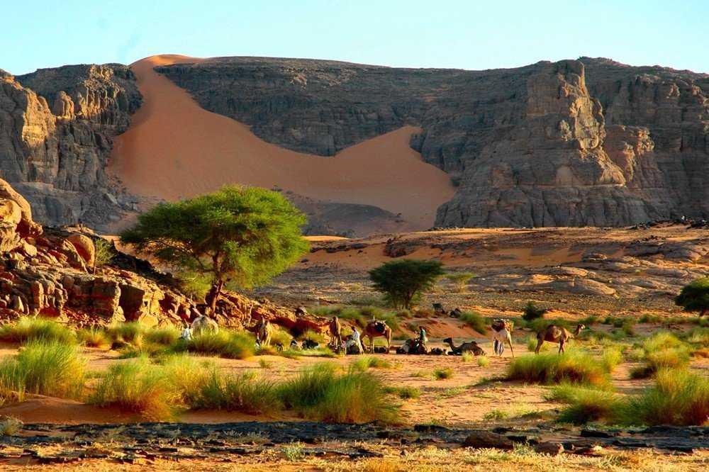 Местность Алжира