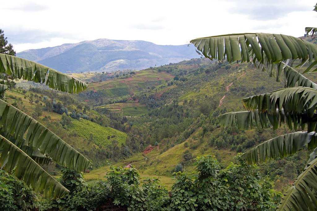 Бурунди природа