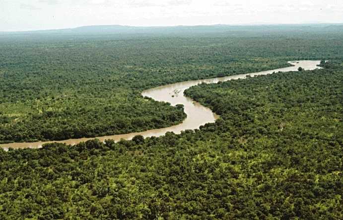 Гамбия природа