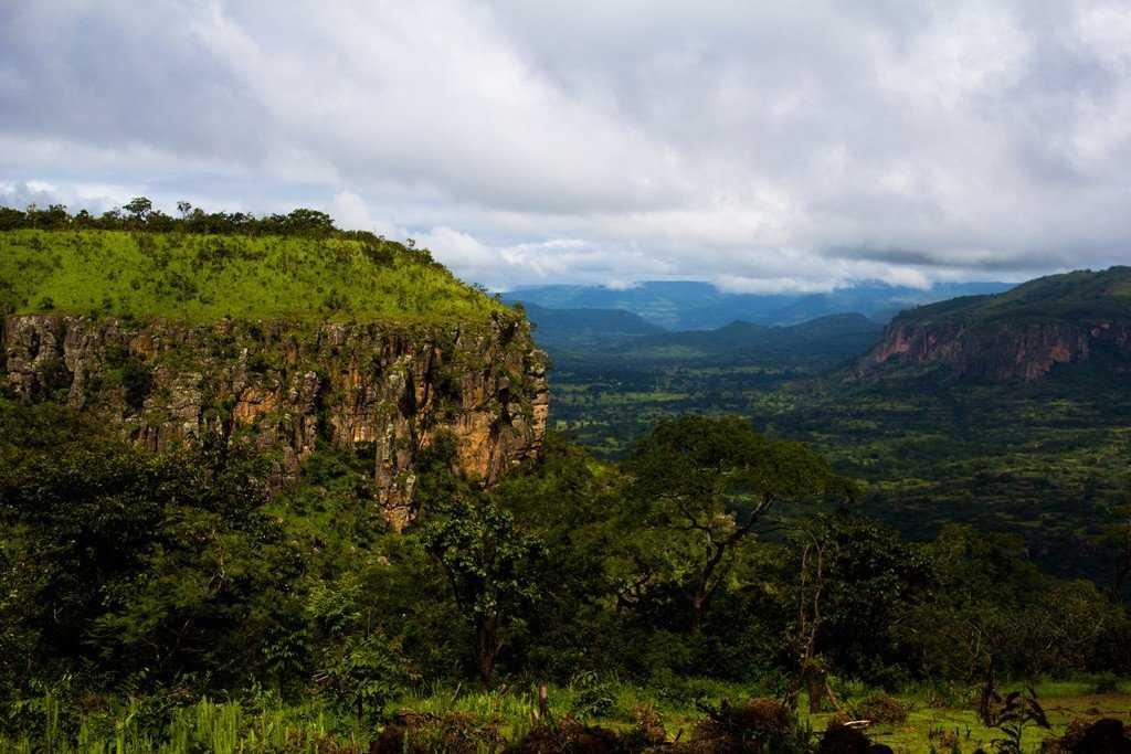 Природа Гвинеи