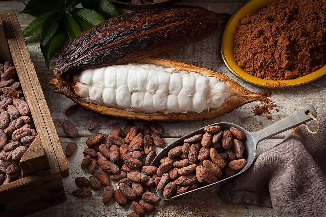 Самые крупные мировые экспортеры какао-бобов